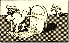 DemocraticRights_thumb.jpg