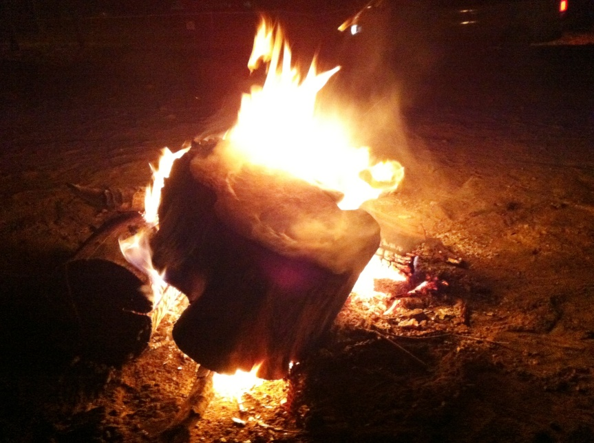 Save the Sacred Fire in MusgravePark!