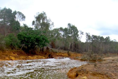 The Dee River at Mount Morgan is highly acidic. Here the river is badly contaminated with heavy metals, staining the rocks and producing a sludge in the river. (Ian Townsend)