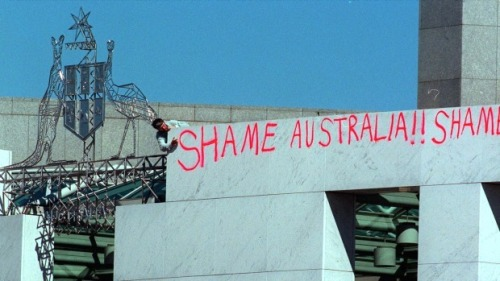 'The graffiti on Parliament House. Photo: Kylie Pickett'