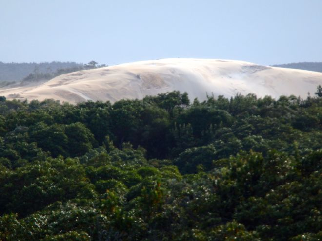 Sand blow behind Point Lookout