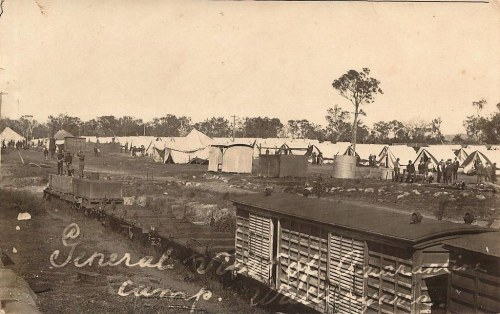 quarantine camp wallangarra Qld