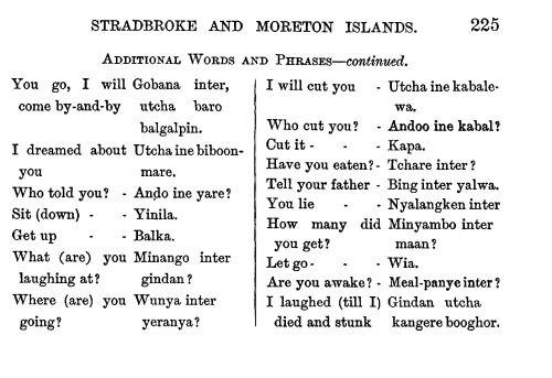 No. 170. -STRADBROKE AND MORETON ISLANDS- GOENPUL TRIBE, JANDAI LANGUAGE. BY GEORGE WATHKIN, ESQ.